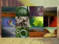 Multi Style jQuery images gallery