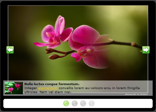 multiple Nice JQuery slideshow
