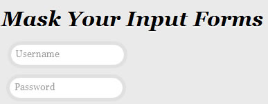 Mask Your Input Forms and Make It Beauty jQuery