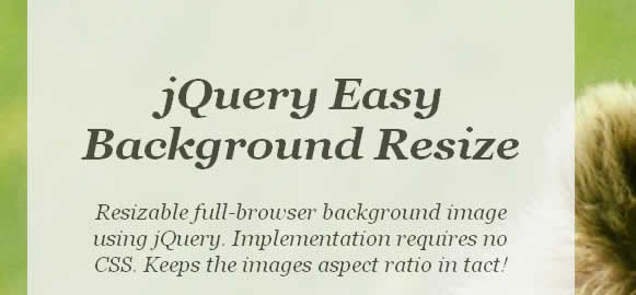 jQuery Easy Background Resize
