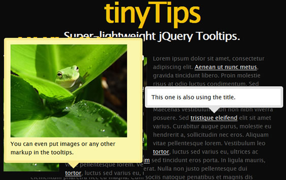TinyTips 1.1-------Pretty Lightweight Tooltips Plugin